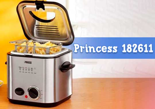 Mini Freidora Princess 182611